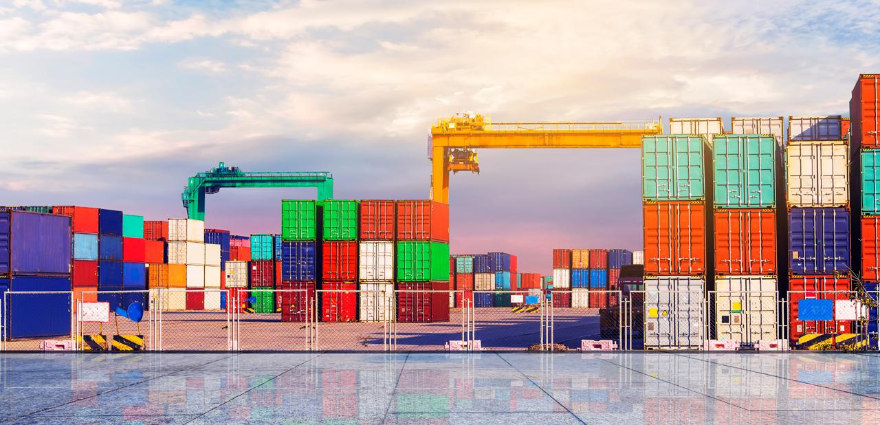 Triumph Logistics LLC, UAE's one of the best logistics company